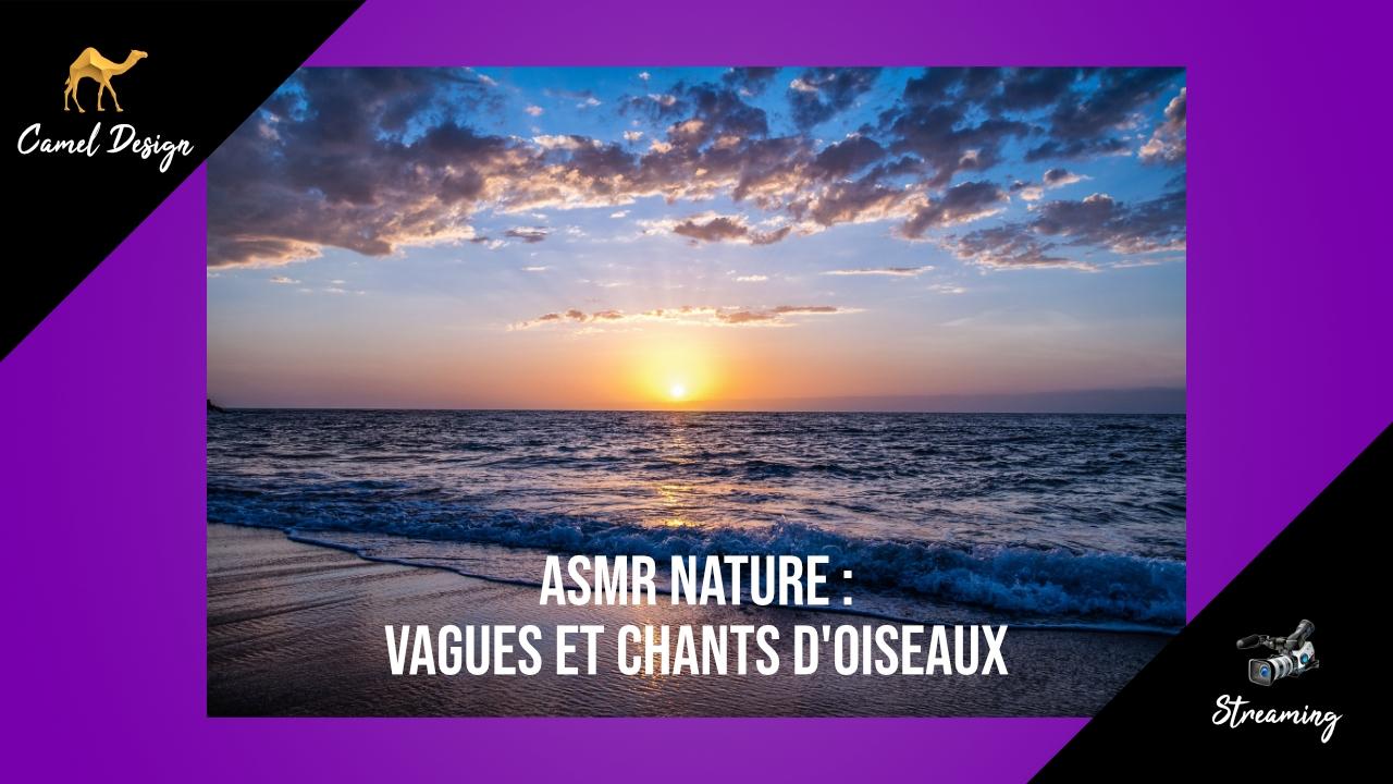 asmr nature bruits des vagues et chants d'oiseaux
