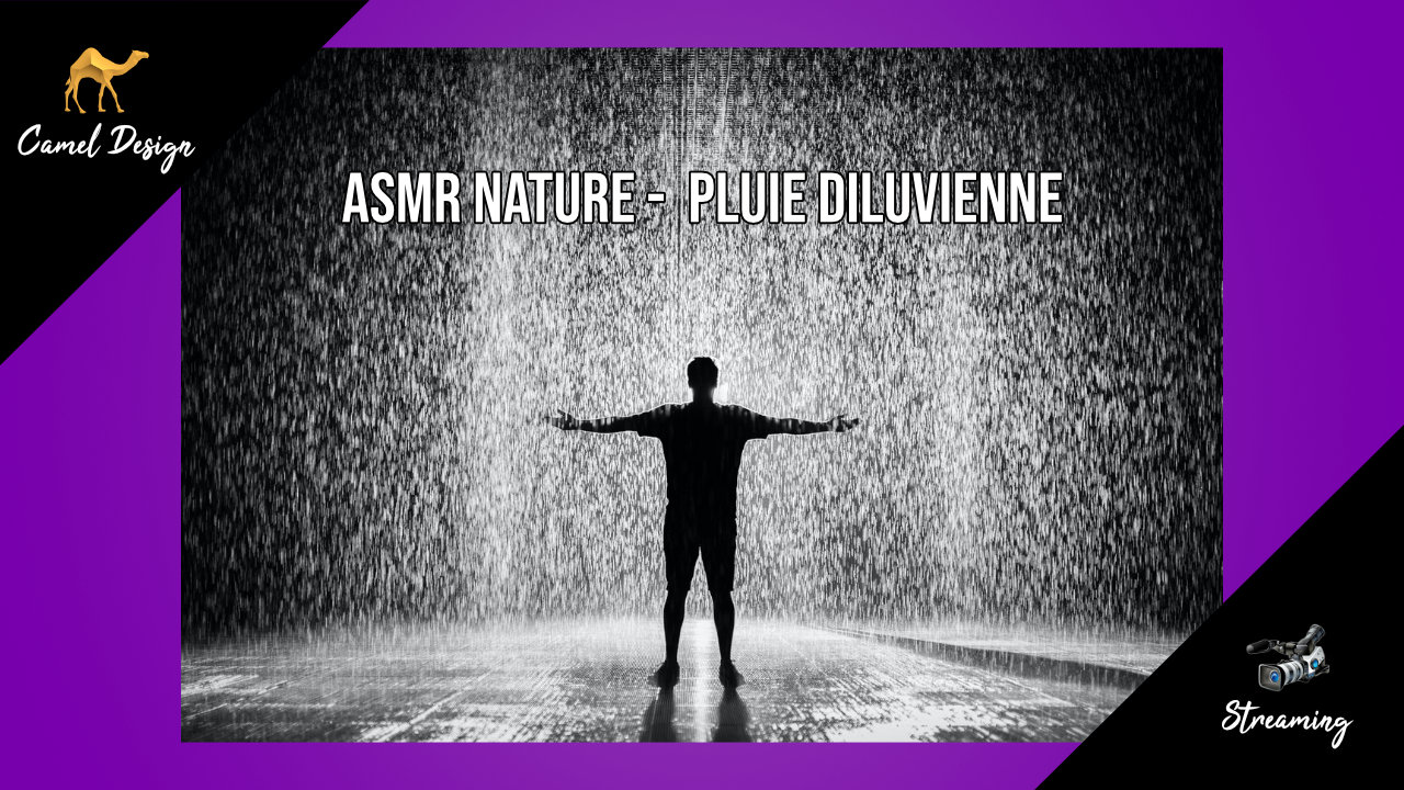 ASMR Nature : pluie diluvienne